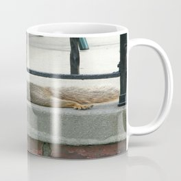 Squirl on a Hot Summers Day. Coffee Mug