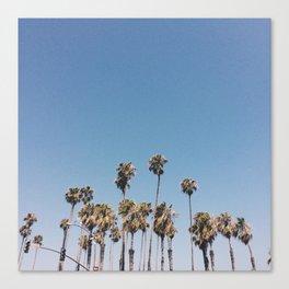 Sunburnt Palms Canvas Print
