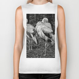 Black And White Storks Biker Tank