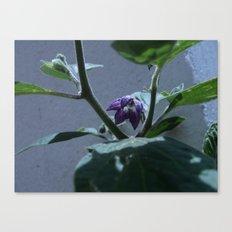Flowers #10 Canvas Print