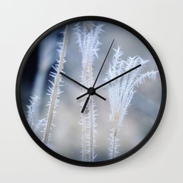 Cold Hoarfrost on the weeds in the winter Wall Clock