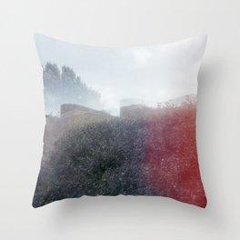 Hickory Throw Pillow