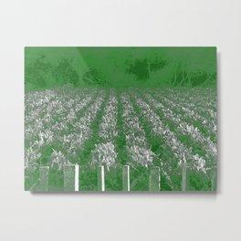 garden of swiss chard Metal Print