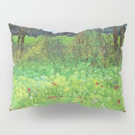 Stroll In County Galway Pillow Sham