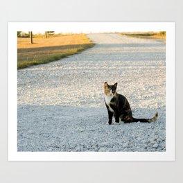 Kountry Kitty Art Print