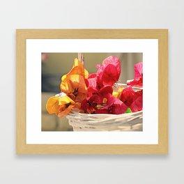 Sunny Bougainville 2 Framed Art Print