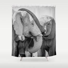 B&W Elephant Love 2 Shower Curtain