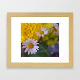 Sweet Marigold Framed Art Print