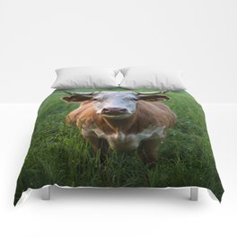 COW - FIELD - GREEN - VALLEY - NATURE - PHOTOGRAPHY - LANDSCAPE Comforters