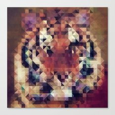 Tigris Canvas Print