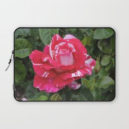 "A Rose Named ""Neil Diamond"" Laptop Sleeve"