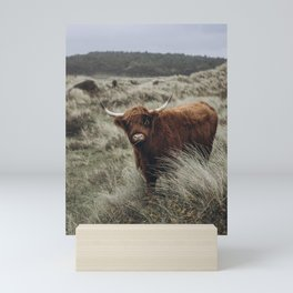Scottish Highlander l | Dutch dunes | Nature photography print | Wall art Art print Mini Art Print