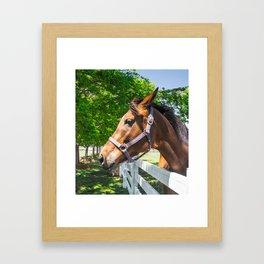 Lets Ride Framed Art Print