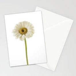 Lone Gerbera Stationery Cards