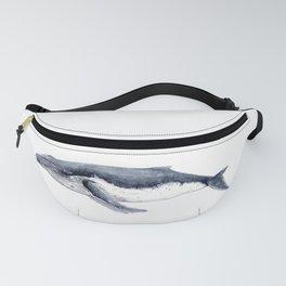Humpback whale (Megaptera novaeangliae) Fanny Pack