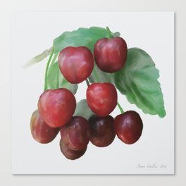 Sour Cherry, watercollor Canvas Print