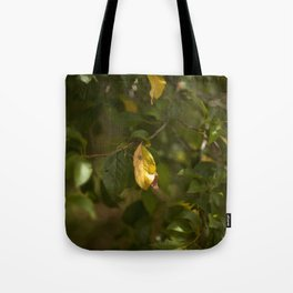 A yellow leaf in the green tree Tote Bag