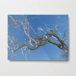 """Graff"" by Roxy Paine, Washington D.C. Metal Print"