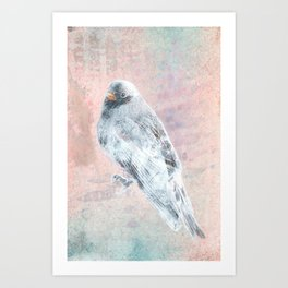 A Forest Visitor Art Print