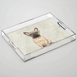 Mr French Bulldog Acrylic Tray