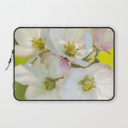 Close-up of Apple tree flowers on a vivid green background - Summer atmosphere Laptop Sleeve