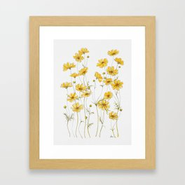 Yellow Cosmos Flowers Gerahmter Kunstdruck