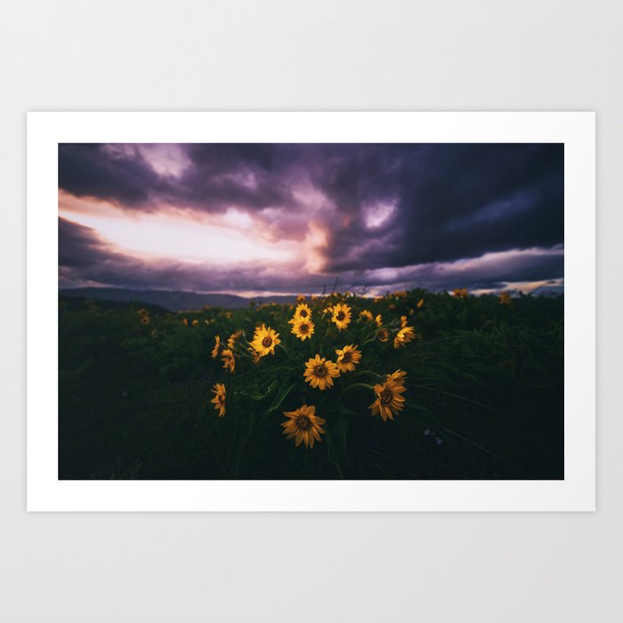 Flowers beneath the Tempest Art Print