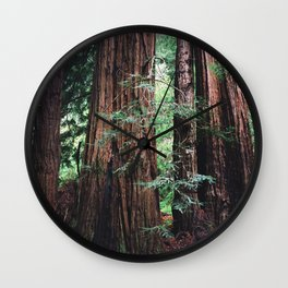 Muir Woods, San Francisco Wall Clock