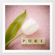 Pure - White Tulip Art Print