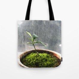 Starting Tote Bag