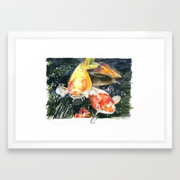 Koi carp 3 Framed Art Print