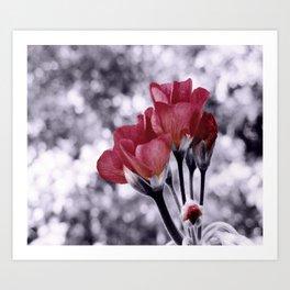 Flowers Pop of Color Light Maroon Art Print