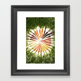 Carrot Color Wheel Framed Art Print