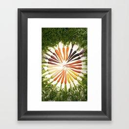 Carrot Color Wheel Framed Art Print