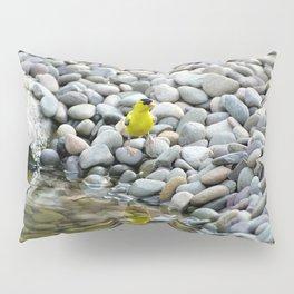 Golden Reflections Pillow Sham
