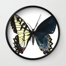 Gynandromorph No.1 Naturalist Butterflies Wall Clock