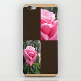 Pink Roses in Anzures 6 Blank Q3F0 iPhone Skin