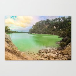 Beautiful but Deadly Canvas Print