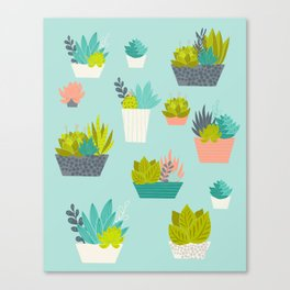 Succulent Container Garden Canvas Print