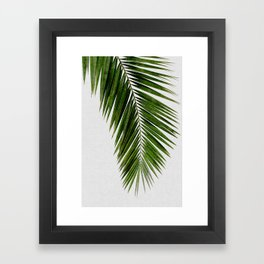 Palm Leaf I Framed Art Print