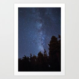 Starry night with the Milky Way in a pine forest Art Print