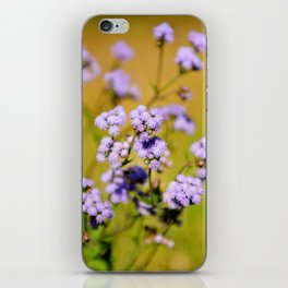 """""""Violette"""" by ICA PAVON iPhone Skin"""