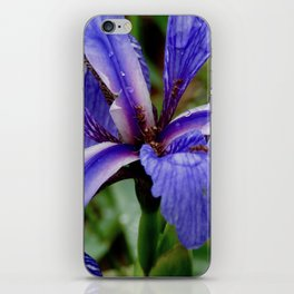 Stunning Microcosm iPhone Skin