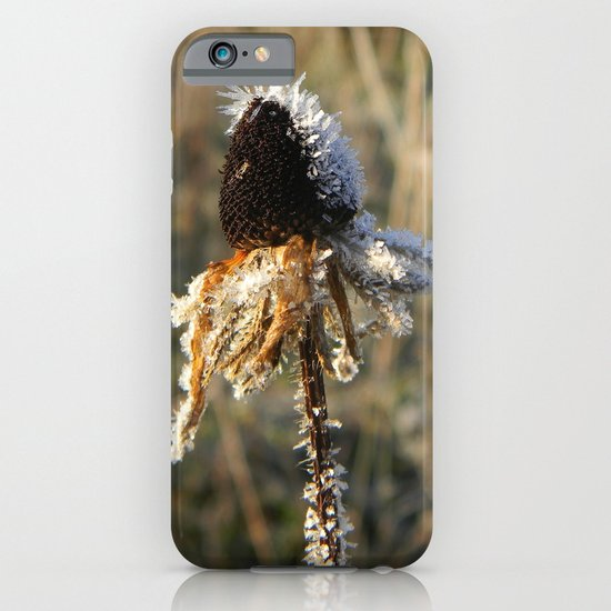 numb iPhone & iPod Case