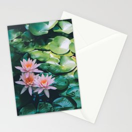 Beauty in the Shadow Stationery Cards