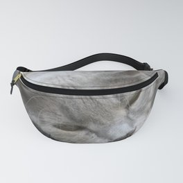Shades Of Grey Cat Photo Portrait Fanny Pack