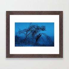 Weeping Pines Framed Art Print