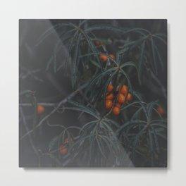 Fruits of Autumn 3 Metal Print