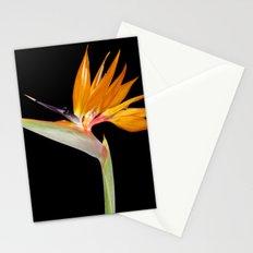 Birds of Paradise Flower Stationery Cards
