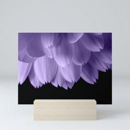Ultra violet purple flower petals black Mini Art Print